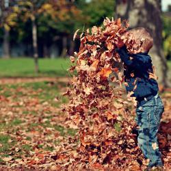 Podzimní rovnodennost nemusí být dnem pouze magickýcm